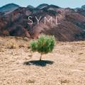 LPSyml / In My Body / Vinyl