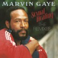 LPGaye Marvin / Sexual Healing / Vinyl / Coloured