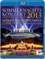 Blu-RayVarious / Sommernachts konzert 2013 / Wiener Philh. / Blu-Ray