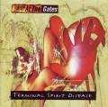 LPAt The Gates / Terminal Spirit Disease / Vinyl