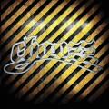 2LPChaozz / 20 let Chaozzu / Vinyl / 2LP