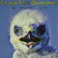 CDCrash Test Dummies / Worm's Life