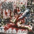 LPSevere Torture / Misantrophic Carnage / Vinyl