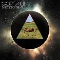 2LPGov't Mule / Dark Side Of The Mule / Vinyl / 2LP / Coloured