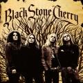 CDBlack Stone Cherry / Black Stone Cherry