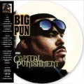 2LPBig Pun / Capital Punishment / Vinyl / 2LP / Picture