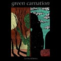 2LPGreen Carnation / Last Day Of Darkness / Vinyl / 2LP