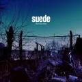CDSuede / Blue Hour