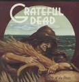 LPGrateful Dead / Wake of The Flood / Vinyl
