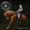 2LPSteve'n'seagulls / Brothers In Farms / 2LP
