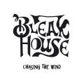LPBleak House / Chasing The Wind / Vinyl