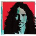 2LPCornell Chris / Chris Cornell / Vinyl / 2LP
