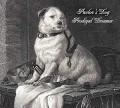 CDPavlov's Dog / Prodigal Dreamer / Digipack