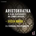 CDBoček Evžen / Aristokratka a vlna zločinnosti na zámku Kostka