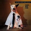 LPSpringfield Rick / Working Class Dog / Vinyl
