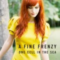 CDFine Frenzy / One Cell In The Sea