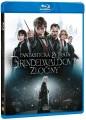 Blu-RayBlu-ray film /  Fantastická zvířata:Grindelwaldovy zločiny / Blu-Ray