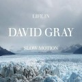 CDGray David / Life In Slow Motion