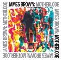 2LPBrown James / Motherlode / Vinyl / 2LP