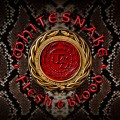 CD/DVDWhitesnake / Flesh & Blood / Limited / CD+DVD