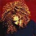 CDJackson Janet / Velvet Rope