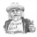 LPJolink Bennie / Bernard Jolink:Post Normaal / Vinyl