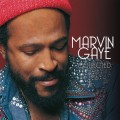 2LPGaye Marvin / Collected / Vinyl / 2LP / Colored