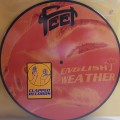 "LPFeet / English Weather / 10""Picture / Vinyl"