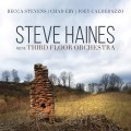 CDHaines, Steve and the Thi / Steve Haines and the Third..
