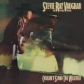 2LP / Vaughan Stevie Ray / Couldn't Stand The.. / Coloured / Vinyl / 2LP