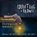2LPCounting Crows / Underwater Sunshine / Coloured / Vinyl / 2LP