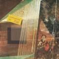LPBoogarins / Sombrou Duvida / Vinyl