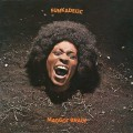 LPFunkadelic / Maggot Brain / Vinyl / Coloured