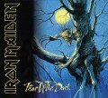 CD / Iron Maiden / Fear Of The Dark / Remastered 2019 / Digipack