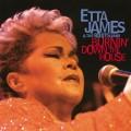 2LPJames Etta / Burnin' Down the House / Vinyl / 2LP
