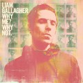 CDGallagher Liam / Why Me? Why Not