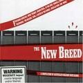 CDVarious / New Breed / Australian Melodic Rock Bands