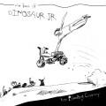 2LPDINOSAUR JR. / Ear Bleeding Country / Best Of / Vinyl / Coloured / 2LP