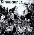 LPDINOSAUR JR. / Dinosaur / Vinyl
