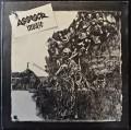 LPAssesor / Invaze / Vinyl