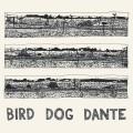 LPParish John / Bird Dog Dante / Vinyl