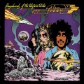 LPThin Lizzy / Vagabonds Of The Western World / Vinyl