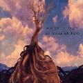 LPMurder By Death / In Bocca Al Lupo / Vinyl