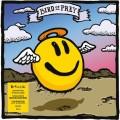 LPFatboy Slim / Sunset(Bird Of Prey) / Vinyl / RSD