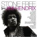 2LPVarious / Stone Free:Jimi Hendrix Tribute / Vinyl / 2LP / RSD