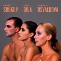 2LPBílá Lucie / Soukup-Bílá-Osvaldová / Vinyl / 2LP