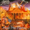 CDOrth / Feed The Flames