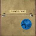 LPSpringsteen Bruce / Album Collection 2 / Vinyl / 10LP