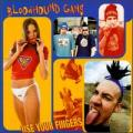 CDBloodhound Gang / Use Your Fingers