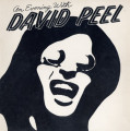 LPPeel David / An Evening With David Peel / Vinyl